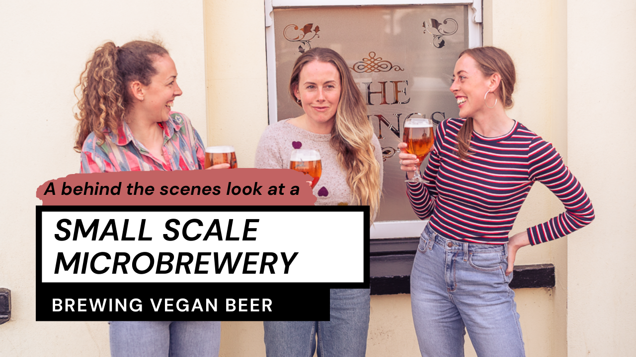 Small Scale Brewery Brewing Vegan Beer